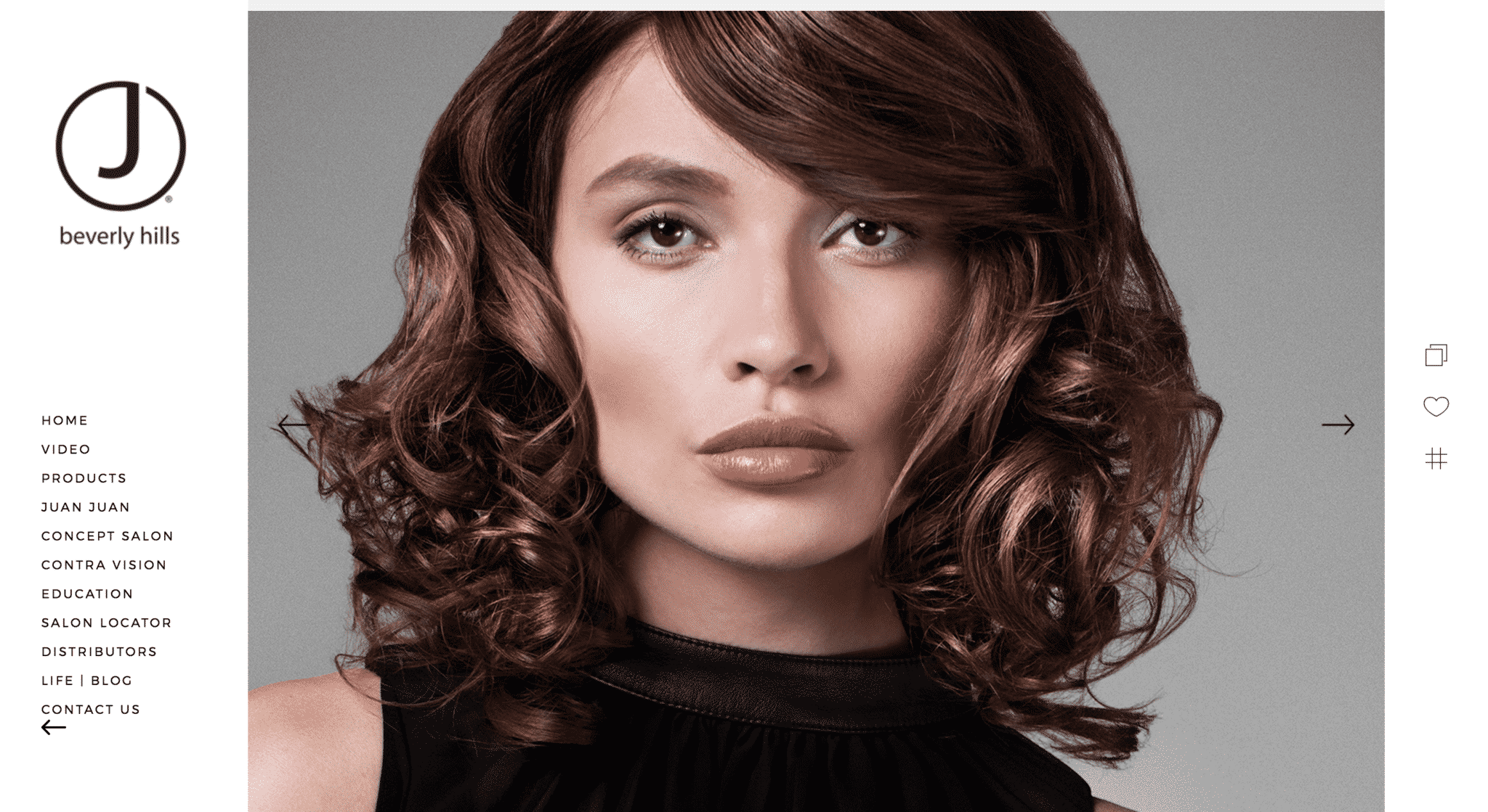 Hair color education offering the best hair color services solutioingenieria